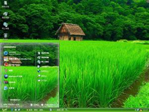 碧绿的植物电脑主题