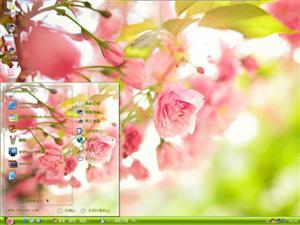 唯美清新花卉电脑主题