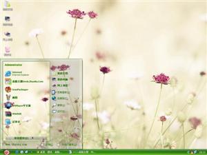好看花朵电脑主题