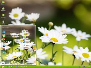 清新花卉电脑主题