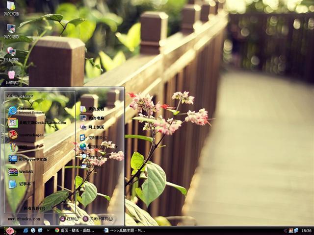 蔷薇花摄影电脑主题图片